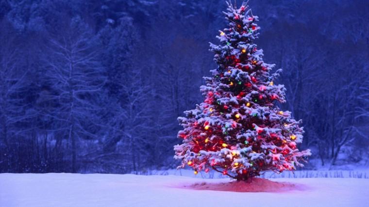 arbol-de-navidad-1280x720